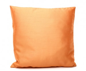 Titian Raw Silk Pillow